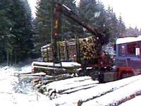 TimberTruck