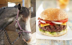Horse-burger
