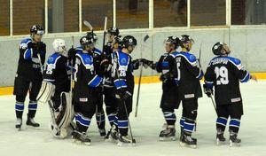 Estonia-Ice Hockey